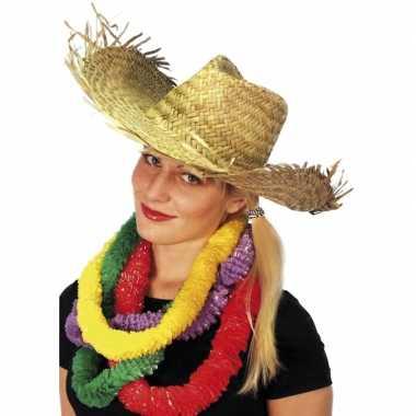 Goedkoop hawaii strandhoed stro carnavalskleding