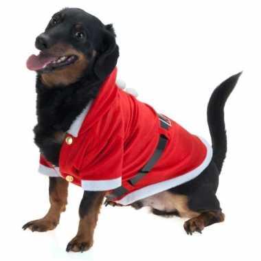 Goedkoop kerstman carnavalskleding hond